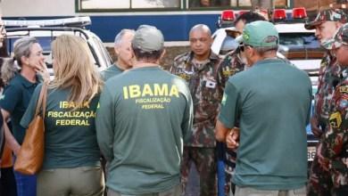 Photo of MPs estaduais deflagram operação em 17 estados para coibir desmatamento da Mata Atlântica