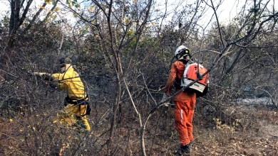 """Photo of #Chapada: Rui diz que """"governo está usando todo material humano disponível e equipamentos para debelar fogo"""""""