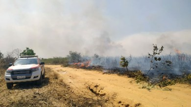 Photo of #Bahia: Bombeiros e brigadistas combatem queimadas no oeste em regiões de Barra, Morpará e Barreiras