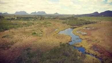 Photo of #Chapada: Moradores criticam decisão do Inema que autoriza o desmatamento de quase mil hectares de vegetação em Piatã