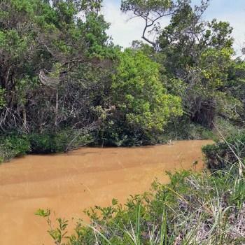 rio contaminado piatã 1