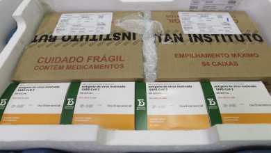 Photo of #Brasil: Insumos para a CoronaVac devem chegar até 3 de fevereiro; Butantan deve produzir 8,6 milhões de doses
