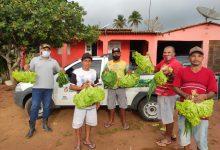 Photo of #Bahia: Programa de Aquisição de Alimentos garante alimentação digna a mais de 213 mil famílias no estado