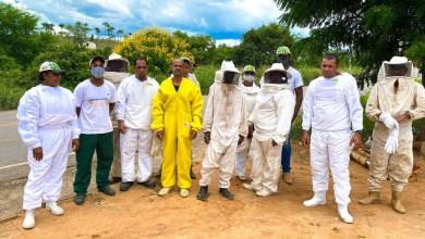 Photo of #Chapada: Curso do Senar de iniciação à apicultura forma criadores de abelhas em Boa Vista do Tupim