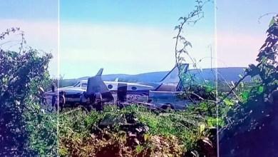 Photo of #Bahia: Aeronave que transportava vacinas para Ibotirama colide em animais ao realizar pouso; ninguém ficou ferido