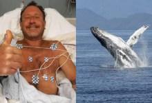 Photo of #Mundo: Mergulhador sobrevive após ser abocanhado por baleia nos Estados Unidos