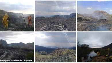Photo of #Chapada: Incêndio florestal atinge Pico das Almas em Rio de Contas e ameaça biodiversidade local