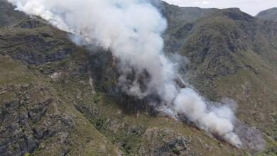 Photo of #Chapada: Suspeito de ser autor de incêndio no 'Parque 7 Passagens' é conduzido à delegacia pela Guarda Municipal