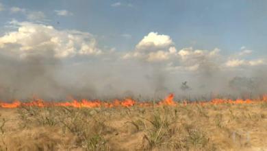 Photo of #Chapada: Sete focos de incêndios florestais atingiram o Parque Nacional da região; todos já foram controlados