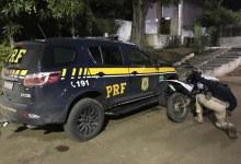 Photo of #Chapada: Polícia apreende motocicleta adulterada e sem placa em Boa Vista do Tupim