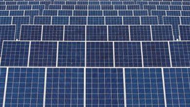 Photo of #Bahia: Estado lidera geração de energias renováveis, apontam dados do governo estadual