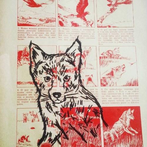 lobo-guara-bordado-sobre-papel-silvana-mello