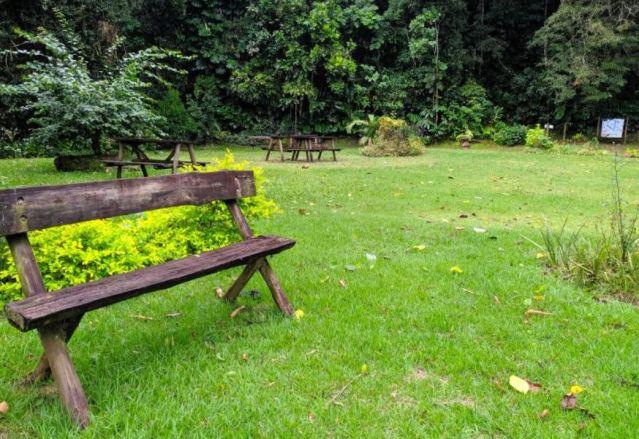 Parque Natural já recebeu mais de mil visitantes em cinco dias de funcionamento