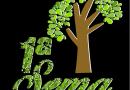 Pinhão: Semana de Meio Ambiente acontece de 4 a 9 de julho