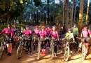 Mountain Bike feminino de Pinhão