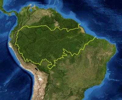"""""""QUERIDA AMAZÓNIA"""" – Injustiça e Crime"""