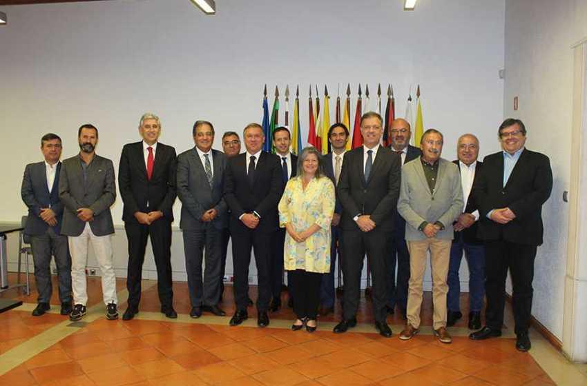Médio Tejo: Anabela Freitas reeleita presidente da CIM