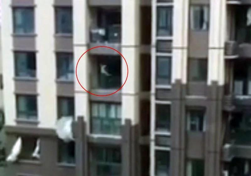 Vizinhos salvam criança de três anos que caiu do 6º andar de prédio; Veja vídeo