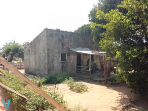 Suposta venda ilegal de casas de empresa ECMEP semeia conflito na Maganja da Costa