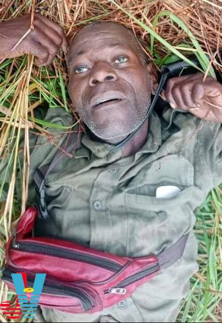 Mariano Nhongo abatido na Gorongosa hoje Mocambique Jornal Visao