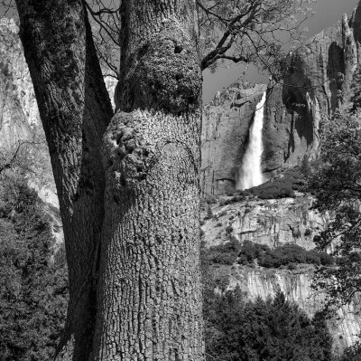 Yosemite Fall, Yosemite Valley