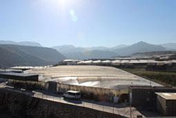 El sector ve inaceptable el nuevo baremo de Agroseguro
