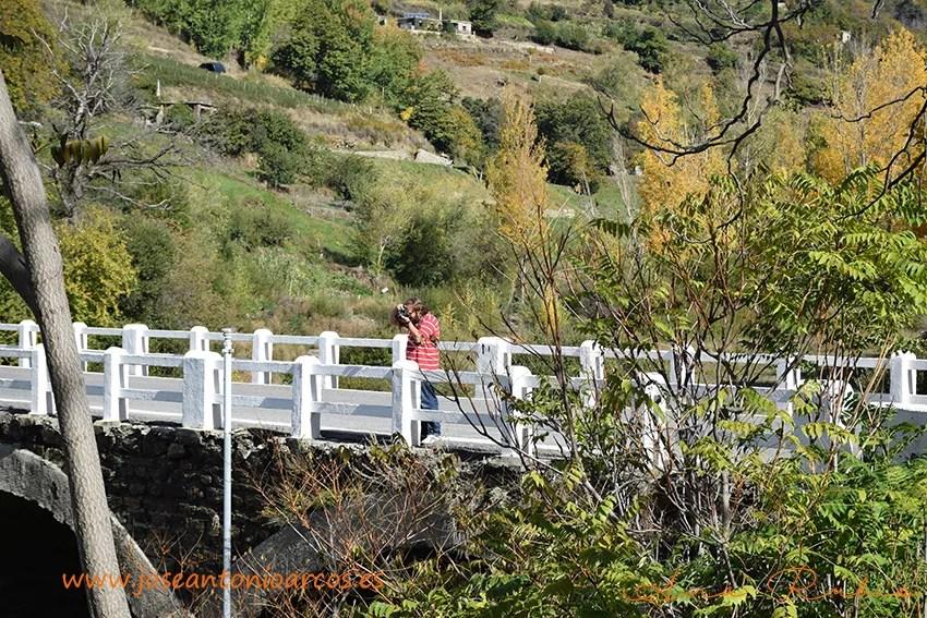 Puente-Trevelez
