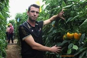 Joven-agricultor
