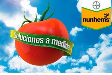 Día 11 de febrero. Jornada de tomate de Nunhems