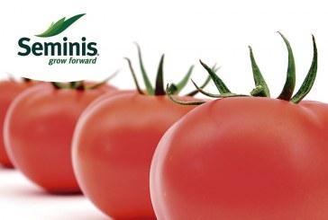 Día 22 de marzo. Día de campo con tomate Bateyo de Seminis