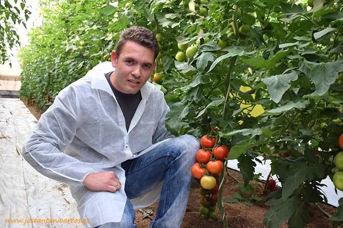Juan Pedro García, productor de tomate del interior de Almería.