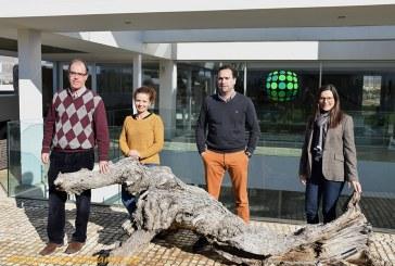 La almeriense Kimitec y la catalana Nice Fruit se unen en una joint venture