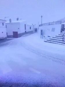 Alcudia de Monteagud nevada, Almería enero 2017