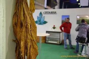 Productores extremeños de tabaco en la feria agrícola de Don Benito en el expositor de Cetarsa.
