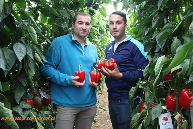 Juan Martín y José Antonio Fernández, agricultores de Adra, con 'Babieca'.