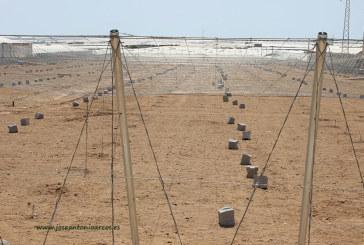 En marcha el plan renove del 'mar de plástico' de El Ejido