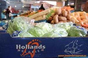 Lechugas en Market Hall, Netherlands.