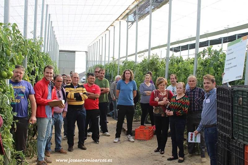 Jornada de tomate de Hazera en El Ejido con Alhóndiga La Unión.