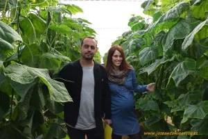 Productores de pepino. Juanjo y su mujer Josefa.