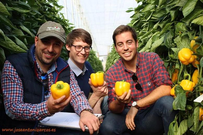 Víctor Jiménez, Matthias Landgraff y Domingo Reinaldos. agroTIP