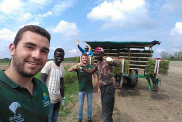 Erasmus agrícola. Alumnos de Campomar y El Soto en Italia