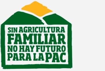 """UPA pide regular la cadena para evitar precios """"locos"""""""