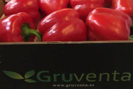 La murciana Gruventa forja alianzas con productores almerienses