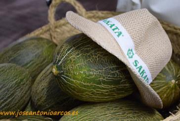 Sakata continúa la línea de sabor de Cordial con Grand Cortés