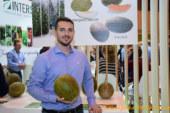 Intersemillas descubre el piel de sapo redondeado y de carne naranja