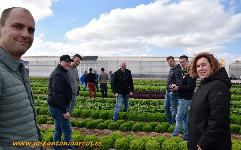 Jornadas de hoja de Nunhems, BASF Vegetable Seeds, en el campo de Cartagena, Murcia.