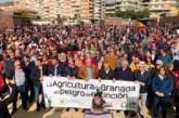 """Los """"precios justos"""" de 3.000 agricultores resuenan en Motril"""