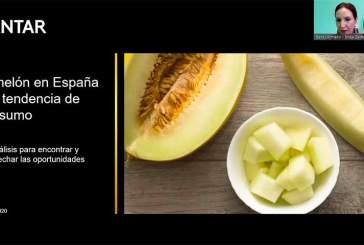 El mercado del melón en España tiene potencial para facturar 100 millones más
