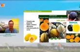 Rijk Zwaan en el mundo del melón y la sandía
