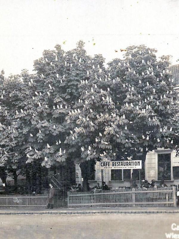 Wien 1935, Restaurant Neubauer